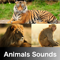 Animals Sounds icon
