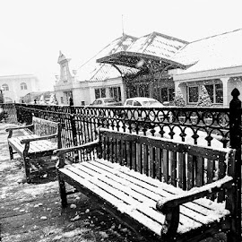 Waiting by Rajat Julka - City,  Street & Park  Street Scenes ( empty bench, waiting in winter, winter, black and white, street photography )