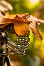 Photo: Saddle up for the fall