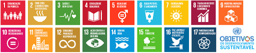 Obejetivos de desenvolvimento sustentável ONU