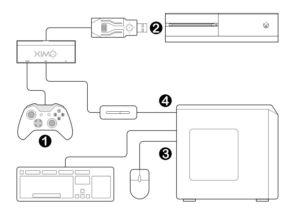 Apex Link - Setup Guide