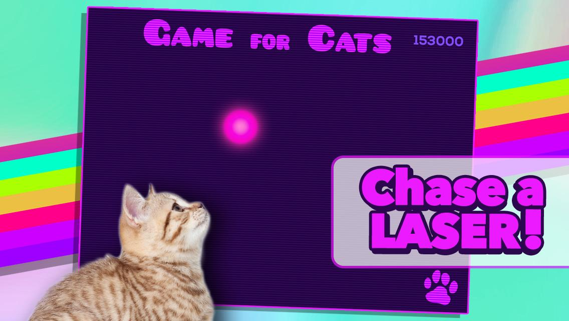 Game for Cats- screenshot