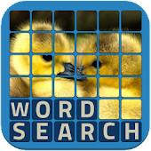 Wordsearch Revealer - Cute