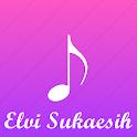 Lagu Elvi Sukaesih Lengkap icon