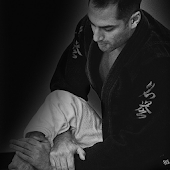 Jiu Jitsu Crash Course