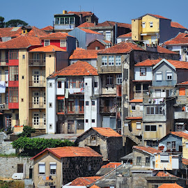 Porto by Tomasz Budziak - Buildings & Architecture Public & Historical ( buildings, architecture, portugal, porto )