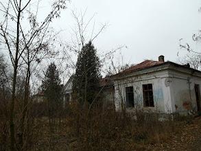 Photo: Dworek w Suszczynie, elewacja frontowa, iglaki przed wejściem