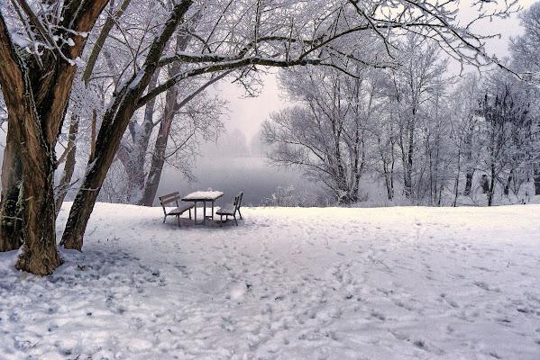Verrà il tempo dei picnic di Sergio Locatelli
