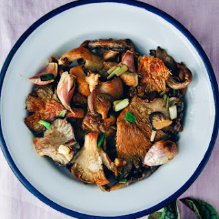 Oyster Mushroom Benefits Recipe