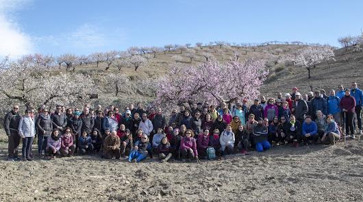Espectacular floración del almendro
