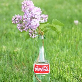 lilacs and soda by Lina Turoci - Artistic Objects Still Life ( cola, coke, grass, green, soda, bottle, lilacs )