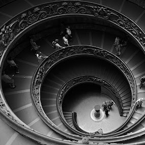 Double Helix Staircase - Vatican Museum - Rome by Steve Corcoran - Buildings & Architecture Architectural Detail ( spiral staircase, b&w, black and white, rome, vatican museum, staircase, double helix, spiral, vatican )