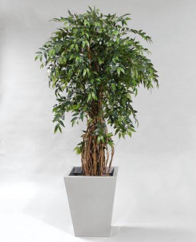 Konstgjorda Träd & Växter