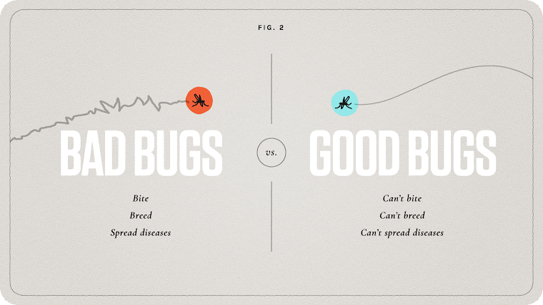 Fig 2: Bad bugs vs. good bugs