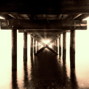 Pathway by Joe Palisi - Landscapes Waterscapes ( water, fog, pier )