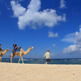 Camel Ride by Alit  Apriyana - Public Holidays Other