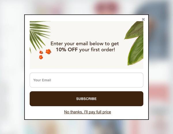 Введите ваш электронный адрес в поле ниже и получите 10%-ную скидку на первую покупку