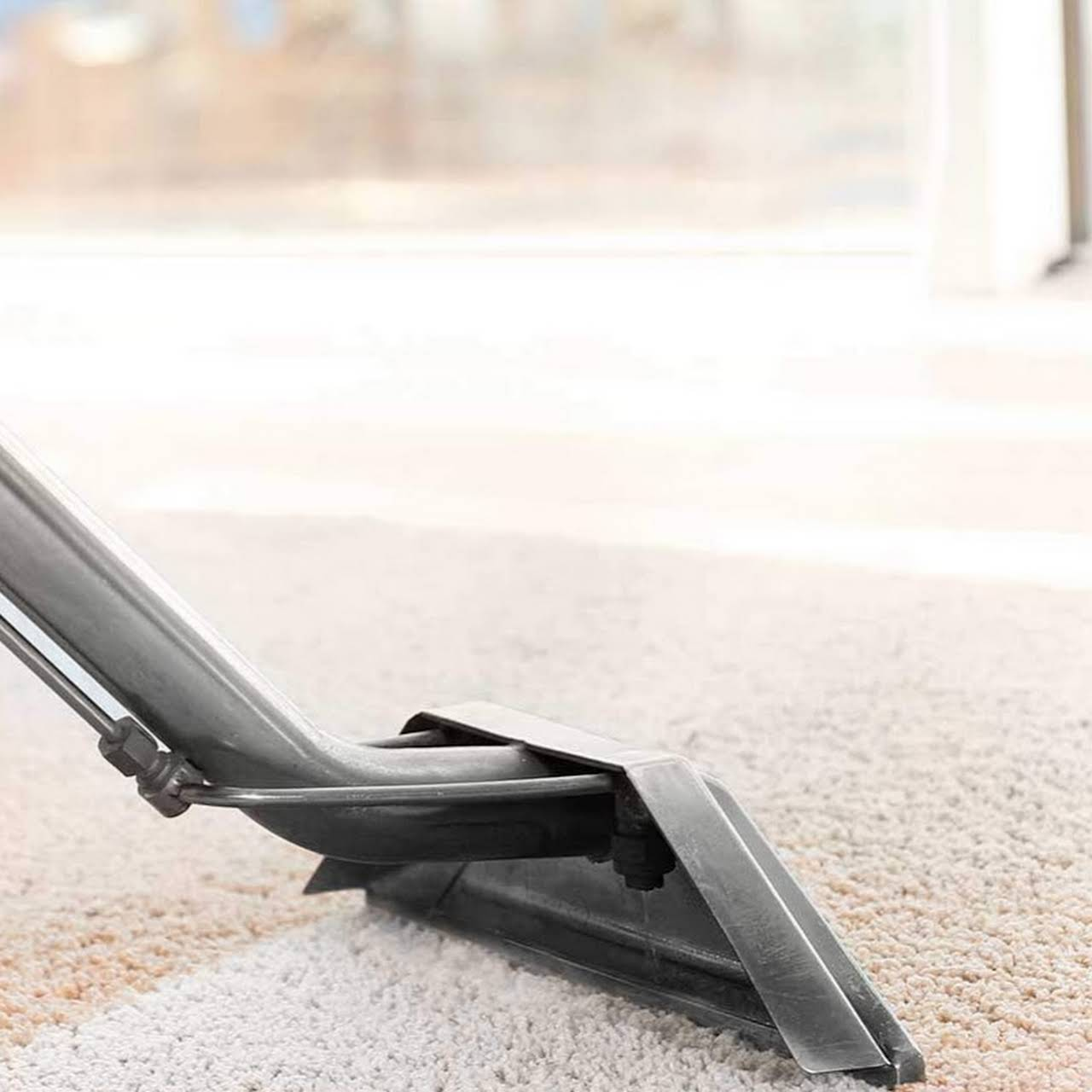 Absolute Best Carpet Amp Upholstery Cleaning Carpet