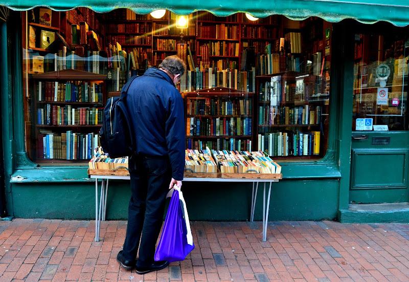 Libri cercasi  di LUCILLA AMERIO