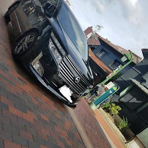 エルグランド  V6 ハイウェスターアーバンクロム 4WD ツインサンルーフ bossサラウントシステム゙のカスタム事例画像 (有)B.R.Mさんの2018年10月13日15:00の投稿