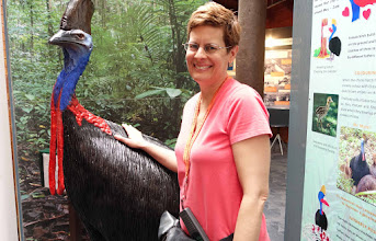 Photo: Robin with model Cassowary. The two we saw on separate occasions were about half this size.