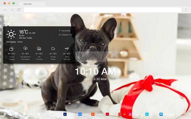 Christmas dog HD New tab Popular pets Theme