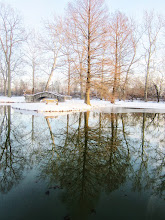 Photo: Snow and stone bridge with a bench and trees reflected in the lake at Eastwood Park in Dayton, Ohio.