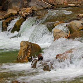 by IS Photography - Nature Up Close Water ( water, cascade, virgin'fresh, river )