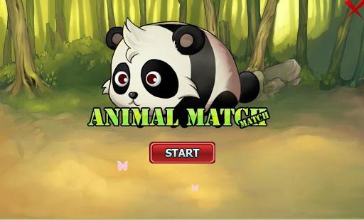 Animal Match Match