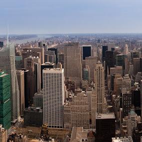 Empire State Pano by Johannes Schaffert - Landscapes Travel ( skyline, skyscrapers, nyc, new york, usa, pwcskylines, city )