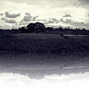 Black And White by Maji Shuki - Landscapes Weather ( black n white, reflection )