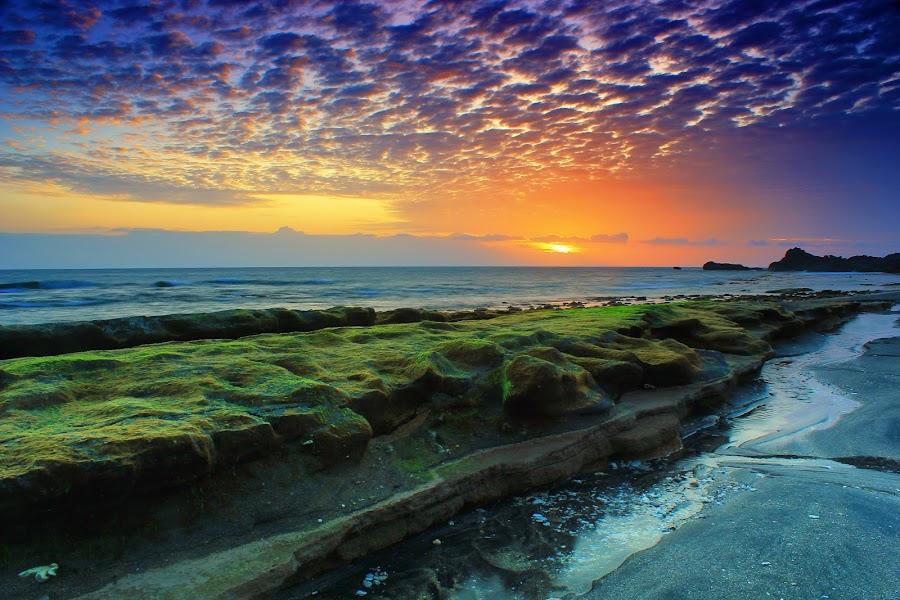 the cloud sheep by Deq BlackSweet - Landscapes Sunsets & Sunrises