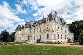 château à Le Lion-d'Angers (49)