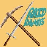 Raid Runners icon