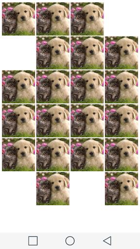 玩解謎App|符合条件的狗和猫免費|APP試玩