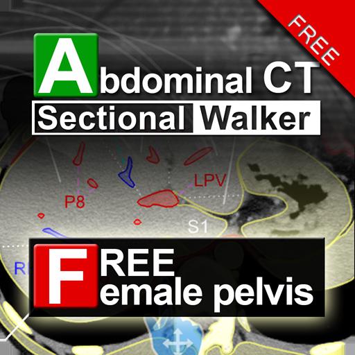 AbdominalCTSectionalWalkerLite