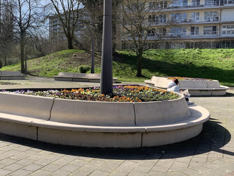 De Modular zitbanken van Escofet 1886 werden opgesteld in de vorm van bloemblaadjes rondom een boom als stempel