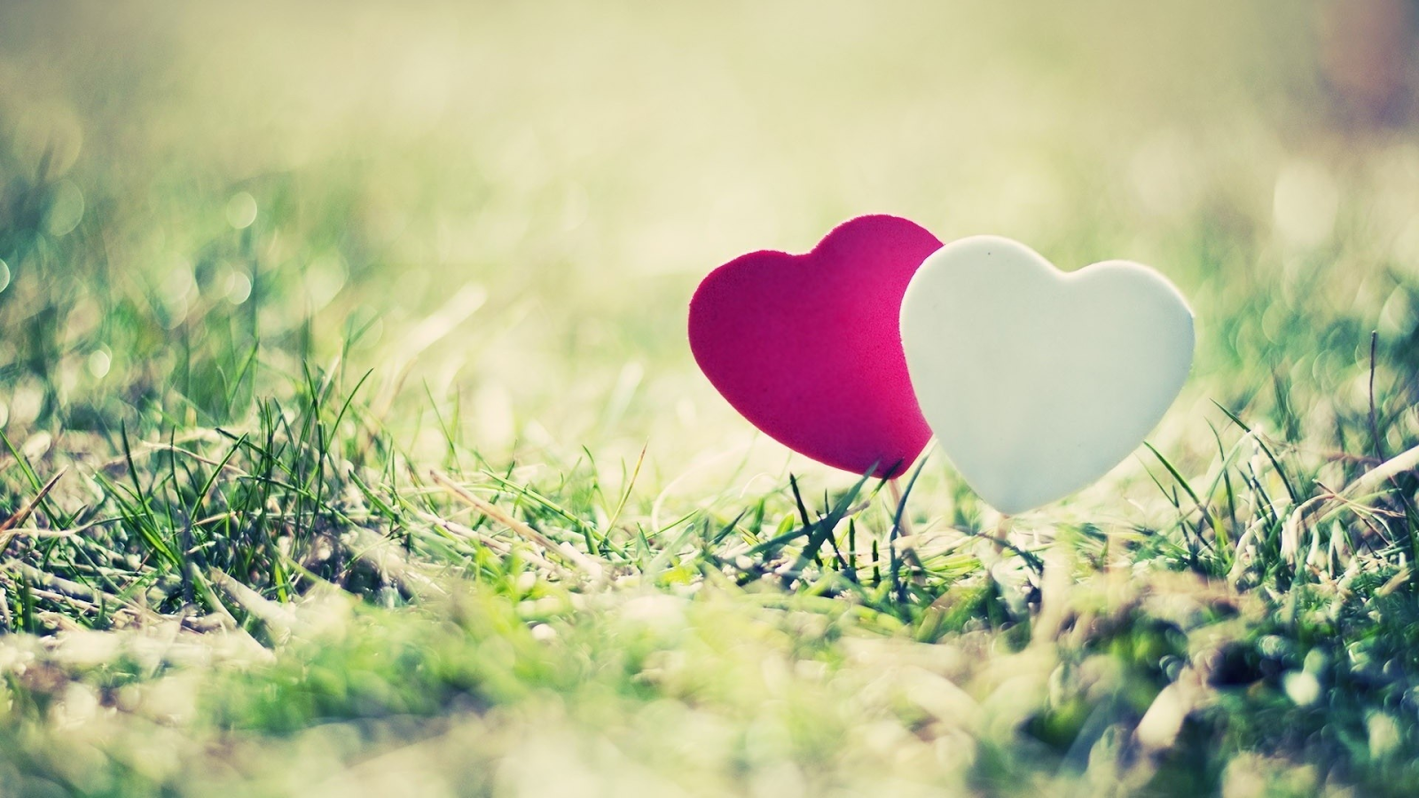Wallpaper download hd love 2016 - Love Images Wallpaper Screenshot