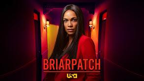 Briarpatch thumbnail