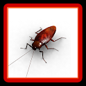 Bug Smash - Squash the Insect! icon