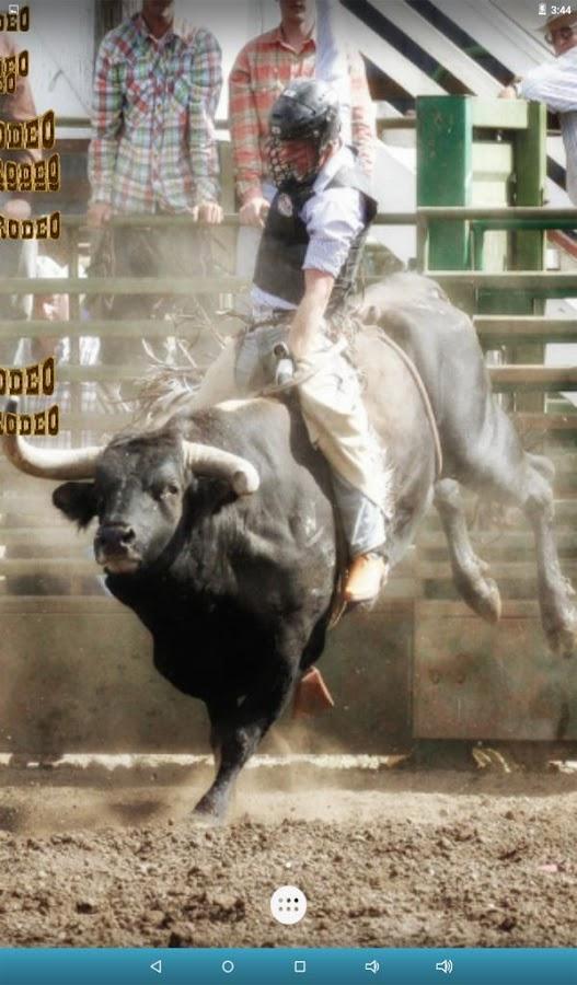 Bull Rodeo Live Wallpaper Screenshot