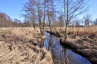 Photo: 88,0 km z drogi Jankowice Białynin