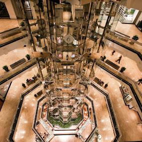 Elevators by Cristobal Garciaferro Rubio - Buildings & Architecture Other Interior ( marble, glass, view, chicago, elvators, usa )