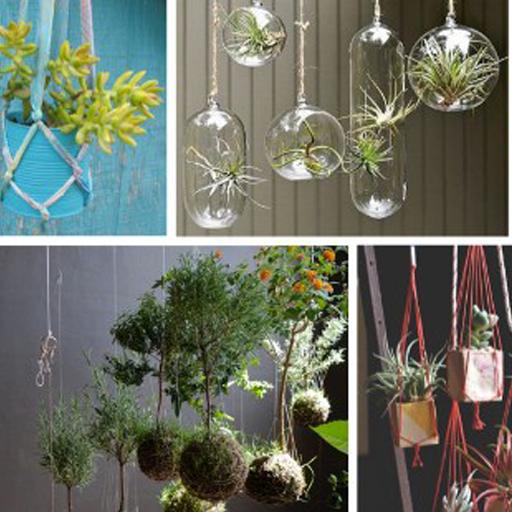 DIY植物装饰 遊戲 App LOGO-硬是要APP
