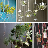 DIY Plant Decor