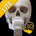 Sistema Scheletrico 3D - Lite icon
