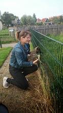 Photo: socialiseren op de kinderboerderij (Mika)