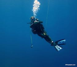 Photo: Dive Master Sarah doing her thing...