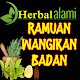 Download Obat Tradisional Jitu Menghilangkan Bau Badan For PC Windows and Mac