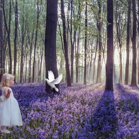 Child and Dove by Gina Gomez - Babies & Children Child Portraits ( child, girl photo, little girl, girl, child portrait, dove )